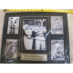 """Williams & Mantel Autographed Mat With Certificate of Authenticity 20"""" x 16"""""""