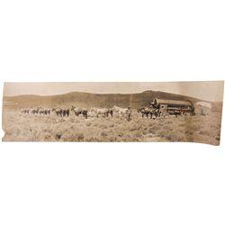 Bodie Wagon Train Photo, NV - Bodie,
