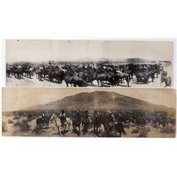 Rickey Ranch Panoramas, NV - Gardnerville,