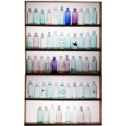 Whitman State Bottle Collection,  - ,