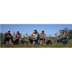 3-day whitetail deer hunt for one hunter and one non-hunter in South Texas - includes trophy fee