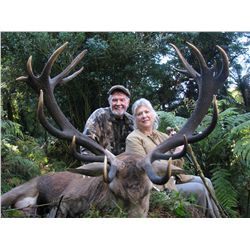 5-day red stag hunt for two hunters in New Zealand - includes trophy fees