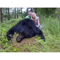 5-day coastal black bear hunt for one hunter on Vancouver Island - includes trophy fees