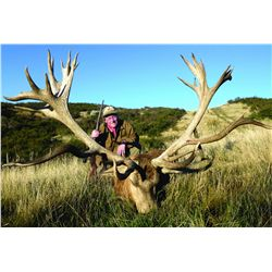 5-day red stag, ram and fallow deer hunt for one hunter and one non-hunter in New Zealand - includes
