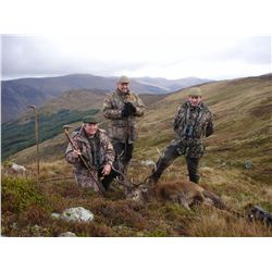 2-day red stag hunt for two hunters and two non-hunters in Scotland - includes trophy fees