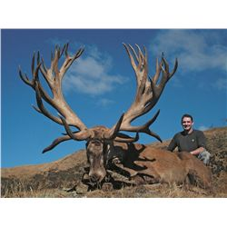 5-day stag hunt for two hunters in New Zealand - includes trophy fees