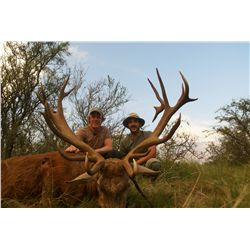 7-day red deer, wild boar and multi-horn sheep hunt for two hunters in La Pampa, Argentina - include