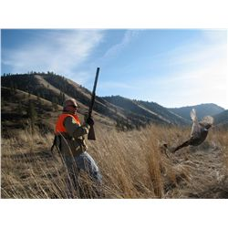 2-day upland game bird hunt for two hunters in Idaho