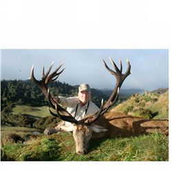 5-day red stag hunt for one hunter and one non-hunter in New Zealand - includes trophy fee