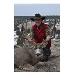 3-day desert mule deer hunt for one hunter in New Mexico - includes trophy fee