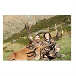 3-day red stag hunt for one hunter and one non-hunter in New Zealand - includes trophy fees