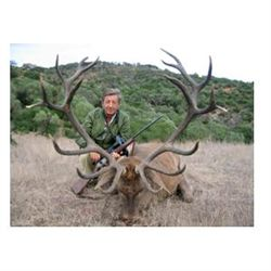 4-day red stag hunt for one hunter in Spain - includes trophy fee
