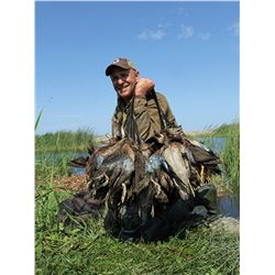 3-day Cinnamon Teal OR Peru Mountain species trophy waterfowl hunt for one hunter in Peru - includes