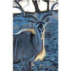 Original painting of kudu bull by well known wildlife artist, Joshua Spies, 11 x13.5