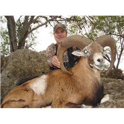 4-day/3-night gemsbok and red sheep hunt for two hunters and two non-hunters in Texas - includes tro