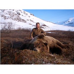10-day brown bear hunt for one hunter in Alaska