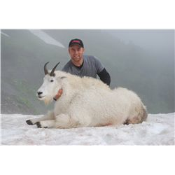 5-day mountain goat and black bear hunt for one hunter in Alaska - includes trophy fees