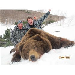 9-day Kamchatka brown bear hunt for one hunter in Russia -