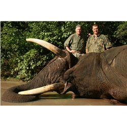 10-day bull elephant hunt for one hunter in Zimbabwe - includes trophy fee