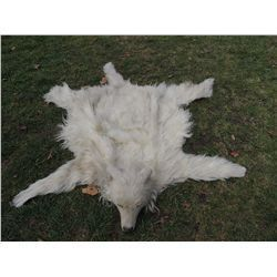 INDIAN WOLF SKIN CEREMONIAL HEADDRESS 1 JOHN BUECHLER F/X SHOP LIQUIDATION