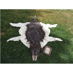 INDIAN WOLF SKIN CEREMONIAL HEADDRESS 2 JOHN BUECHLER F/X SHOP LIQUIDATION