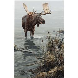 Silent Waters Moose by Seerey-Lester, John