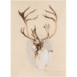 Caribou by Coleman, Michael