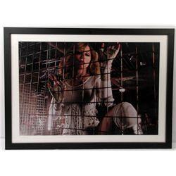 Madonna Framed Photo