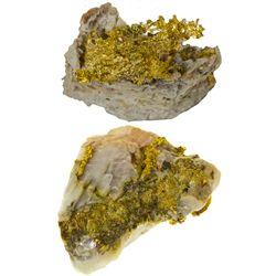 AZ, La Paz County--Gold Specimen Pair