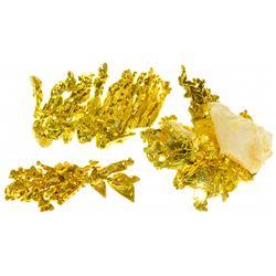 CA, Placer County--Eagle's Nest Gold Specimens