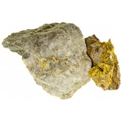 NVNevada Gold