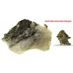 SD, -Custer County-Gold in Quartz from Homestake Mine