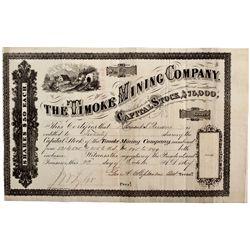 NV, Austin-Lander County-Timoke Mining Company Stock