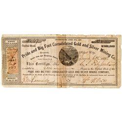 NV, Silver City-Lyon County-Nevada Territory Stock Certificate *Territorial*
