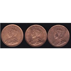 Lot of Three Large One Cents 1918, 1919, 1920