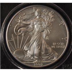 2009 USA Silver Eagle