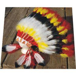 trading post Indian head dress
