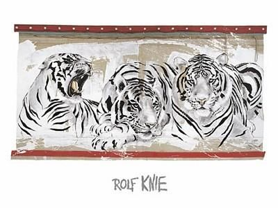 Rolf Knie Three White Tigers Poster Kunstdruck Kunstdrucke Bild  60 x 80 cm