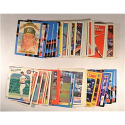 71  --  1988 Baseball Stars and Rookie Cards, Sandberg Sport Flics,