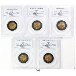 Lot of gold dust in 5 separate PCGS capsules with total weights of 1.5 grams each, from the S.S. Cen