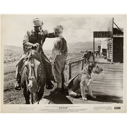 Alan Ladd Original Vintage Photo Still from Shane