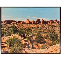 UT,Moab-Grand County,Arches National Park Photograph
