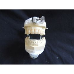 INTERVIEW WITH THE VAMPIRE LESTAT TOM CRUISE SCREEN USED HERO FANGS TEETH ON LIFE CAST