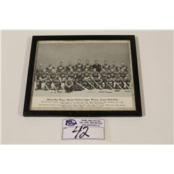 1934-35 CCM BROWN BORDER DETROIT RED WINGS FRAMED TEAM PICTURE
