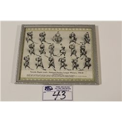 1934-35 CCM GREEN BORDER TORONTO MAPLE LEAFS FRAMED TEAM PICTURE