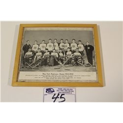 1933-34 CCM BROWN BORDER NEW YORK AMERICANS FRAMED TEAM PICTURE