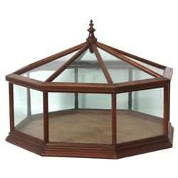 Walnut Terrarium Lift Top Showcase
