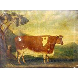 "ENGLISH SCHOOL (19TH CENTURY) OIL ON CANVAS: a primitive cow, 22"" x  30"" £400-600"