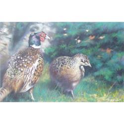 """JOEL KIRK (1948- ) PASTEL: Pheasants, signed, 12.5"""" x 19"""" £400-600"""