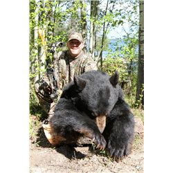 5-Day Black Bear Hunt for One Hunter in Alberta, Canada - Includes Trophy Fee